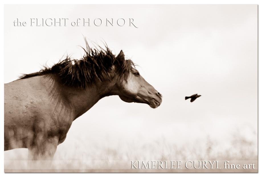 FlightKCuryl